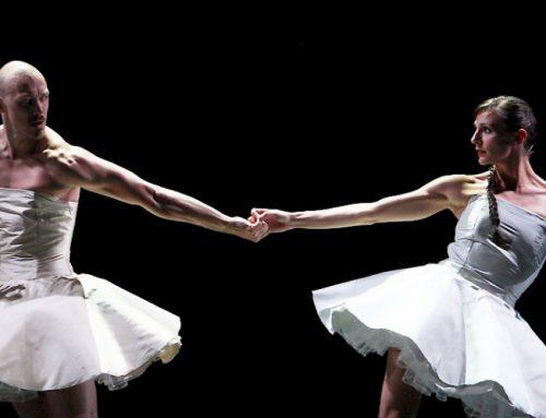 Scapino Ballet Rotterdam – Danskijkers