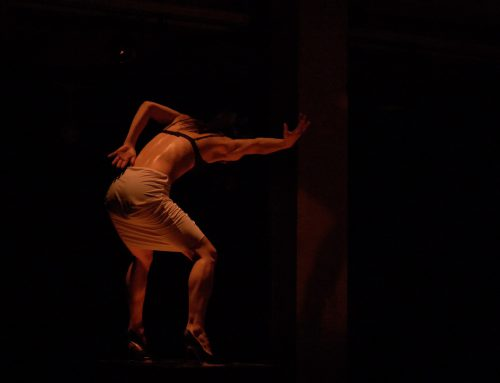 IMPRESSIONEN Compagnie Linga  SOLOGRAPHIES