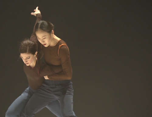 """What the hell is water?"" – YY Dance Company 