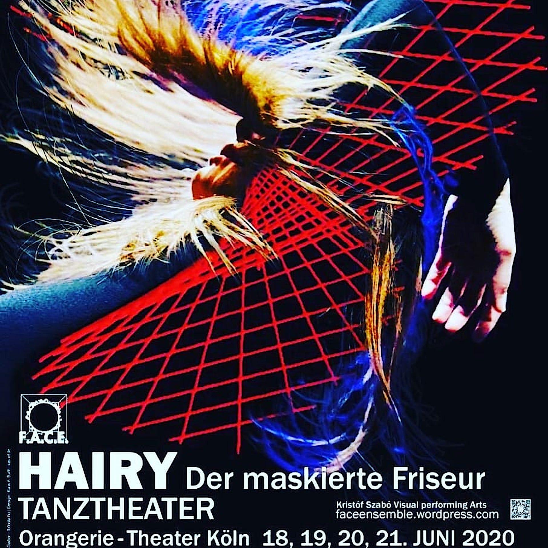 HAIRY-der-maskierte-Friseur-FACE